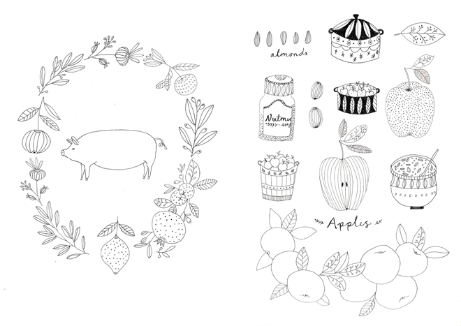 ryn frank botanical drawings
